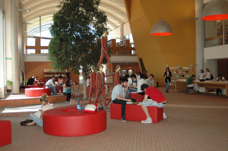 Divanetti Biblioteca